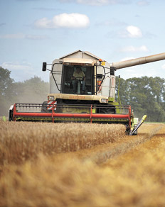 El modelo agroexportador contra el desarrollo