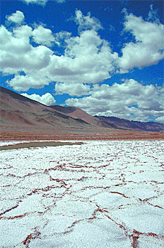 /fotos/futuro/20110402/notas_f/lit.jpg