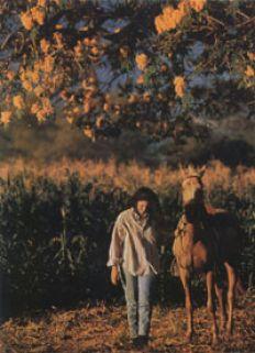 /fotos/rosario/20051020/notas_o/08A.JPG