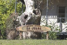 P gina 12 turismo for Viveros en escobar